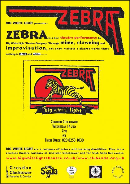Big White Light Zebra flyer